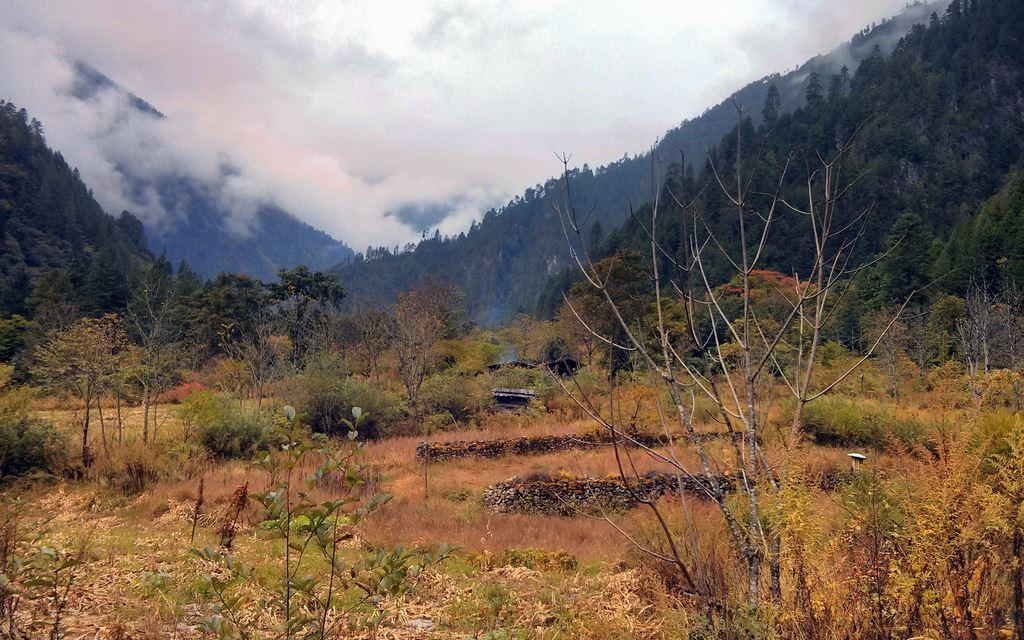 Nandai village