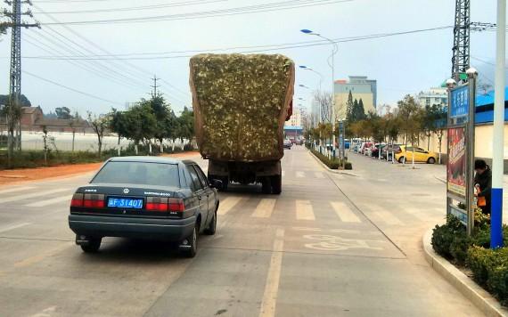 Cabbage truck