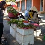 The Tutin bargaining over green mango