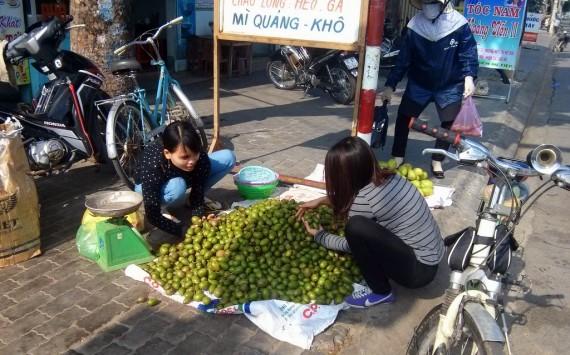 Coc fruit