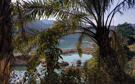 Here she is again, mother of rivers, through a nice screen of palm trees