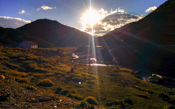 The meadow at 3900 m